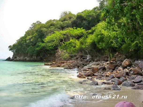 Удивительный остров