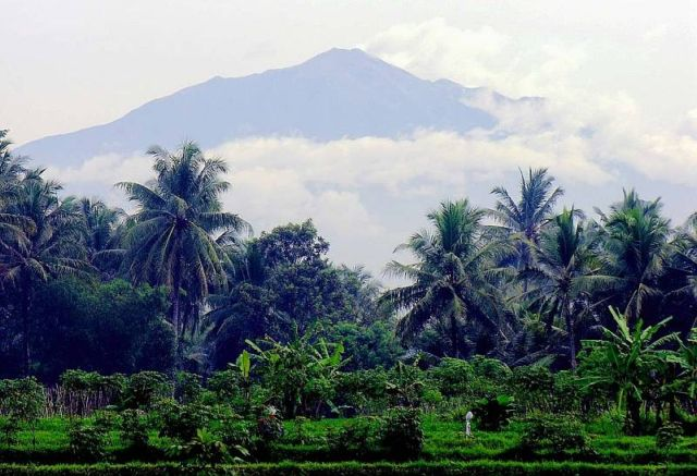 Остров Ява