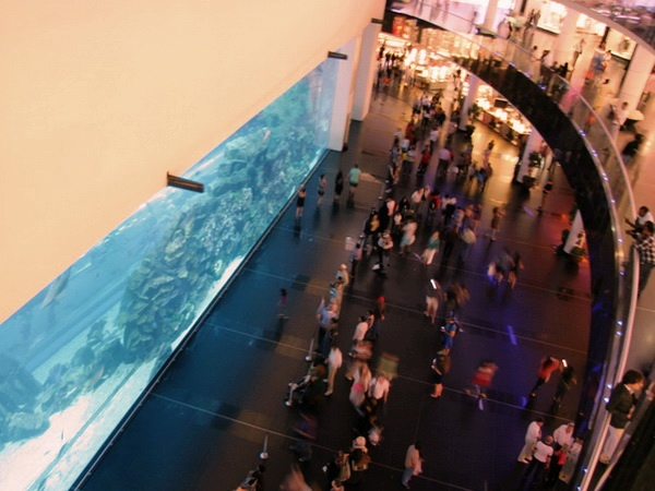 аквариум в Дубае