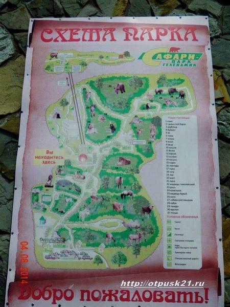Схема «Сафари-парка»