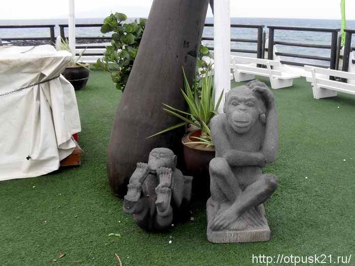 отдых на острове Тенерифе